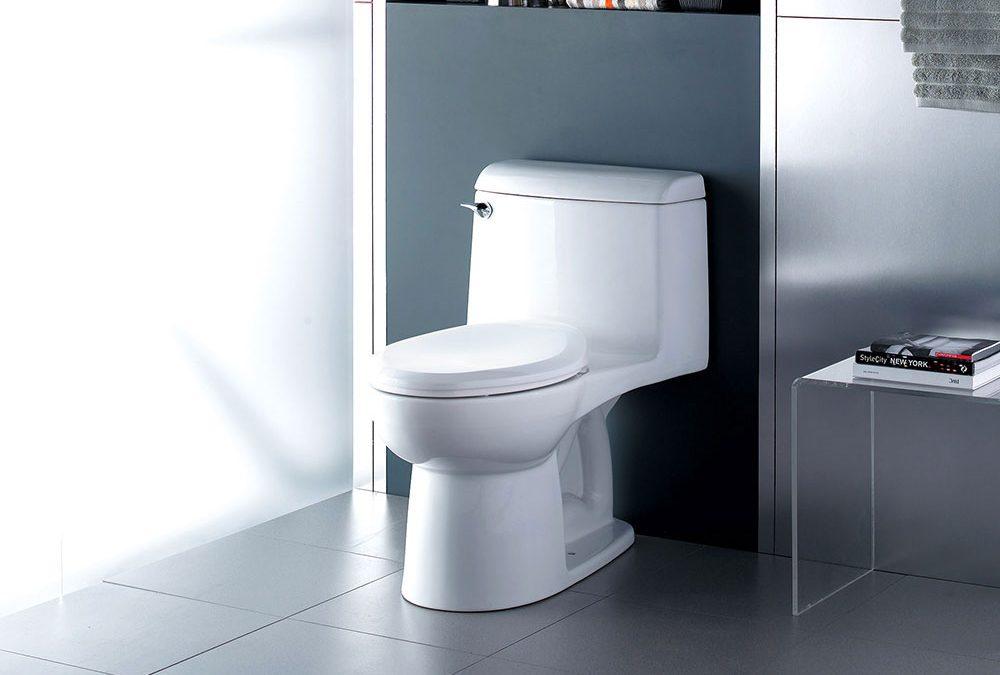 Eco-Friendly , Dual Flush Toilets Available at Polaris