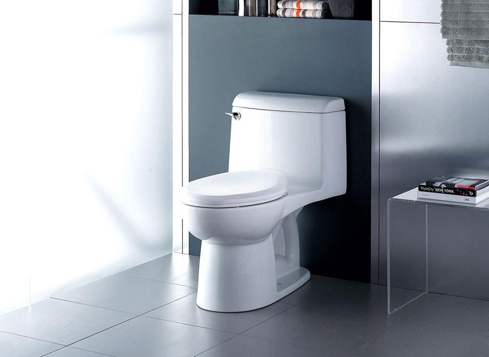 Eco Friendly Dual Flush Toilets Available At Polaris